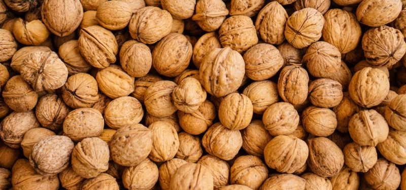 Cultivation and Export of Moldovan Walnuts - Significant Achievements and Challenges of the Sector